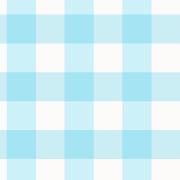 Estampa Vichy Azul - Pijamas Infantis em Algodão Pima Peruano Cookie